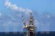 PVN làm việc với JBIC tìm kiếm nguồn tài chính cho dự án khí Lô B