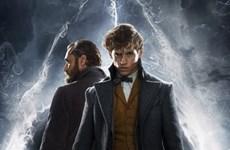 Fantastic Beasts 2 tung trailer hé lộ nhiều tình tiết gay cấn