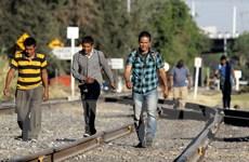 Quốc hội Mexico phản đối Mỹ triển khai Lực lượng Vệ binh quốc gia