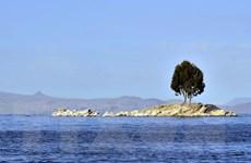 Bolivia lên kế hoạch xây bảo tàng dưới nước đầu tiên