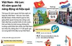 [Infographics] Việt Nam-Hà Lan: 45 năm quan hệ năng động và hiệu quả