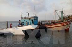 Nguyên nhân vụ tàu Greenlines DP C3 gặp sự cố trên biển Cần Giờ