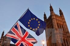 Nhiều nghị sỹ liên đảng Anh đòi tổ chức cuộc trưng cầu lại về Brexit