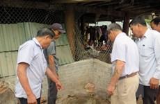 Gia Lai: Hai cha con tử vong do bị ngạt khí khi đào hầm