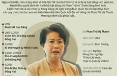 [Infographics] Quan lộ và sai phạm của bà Phan Thị Mỹ Thanh