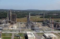 Lọc dầu Dung Quất đạt Top 10 Nhà máy xanh thân thiện năm 2018