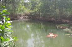 Quảng Ngãi: Hai học sinh chết đuối vì trượt chân vào vũng nước sâu