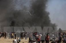 Em bé Palestine 8 tháng tuổi chết vì hơi cay của binh lính Israel