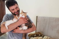 Chuyện kỳ diệu về người đàn ông chăm sóc chó mèo bị bỏ rơi tại Syria