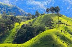 Tìm kiếm phượt thủ mất tích 5 ngày khi leo núi tại Bình Thuận
