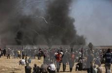 ICC cam kết theo dõi sát sao tình hình bạo lực tại Dải Gaza