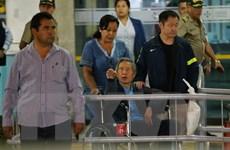 Peru cấm cựu Tổng thống Fujimorii xuất cảnh trong 4 tháng