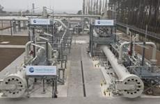 Mỹ kêu gọi EU phản đối triển khai dự án Dòng chảy phương Bắc 2