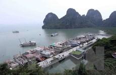 Không có việc cấm tàu từ Cát Bà đưa khách sang vịnh Hạ Long