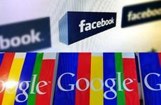 Bang Washington kiện Facebook, Google vi phạm minh bạch bầu cử