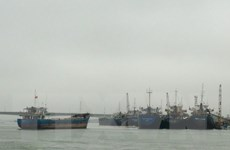 Báo cáo đầu tư xây Khu bến cảng Mỹ Thủy tại Quảng Trị
