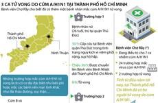 Toàn cảnh tình hình cúm A/H1N1 tại Thành phố Hồ Chí Minh
