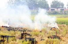 Vận động người dân cam kết không đốt rơm rạ tại đồng ruộng