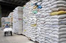 Kim ngạch xuất khẩu gạo Việt Nam sang Malaysia tăng đột biến