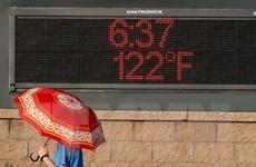 Những đợt nắng nóng khủng khiếp nhất trong lịch sử thế giới
