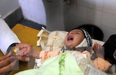 Yemen hoan nghênh Nghị viện Arab tố cáo tội ác của Houthi
