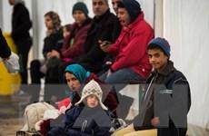 Đức thúc đẩy Kế hoạch Marshall nhằm giải quyết khủng hoảng tị nạn