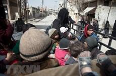 Tổng thống Pháp gặp Ngoại trưởng Nga bàn về xung đột Syria, Ukraine