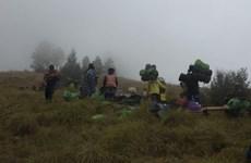 Indonesia: Hàng trăm người mắc kẹt trên núi Rinjani sau động đất