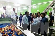 Việt Nam xúc tiến đầu tư và thương mại tại tỉnh Médéa của Algeria