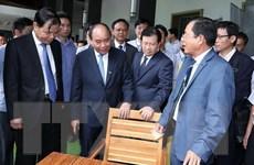 Đưa chế biến gỗ và lâm sản trở thành một ngành sản xuất mũi nhọn