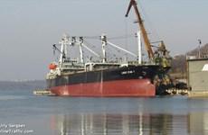 Các nhà nhập khẩu Hàn Quốc biết tàu chở than đá của Triều Tiên
