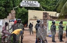 Người đứng đầu một điểm bỏ phiếu bầu cử ở Mali bị sát hại