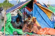 Ngày đen tối ở bang Rakhine: 132 nghị sỹ ASEAN kêu gọi ICC điều tra