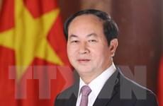 Chủ tịch nước Trần Đại Quang trả lời phỏng vấn báo chí Ai Cập