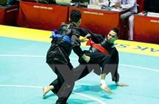 ASIAD 2018: Đoàn thể thao Việt Nam hoàn thành mục tiêu đề ra