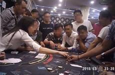 TP.HCM: Khởi tố nhiều đối tượng tổ chức đánh bạc quy mô lớn