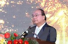 Bảo hộ giá trị sâm Ngọc Linh như thương hiệu quốc gia Việt Nam