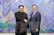 Trình kiến nghị phê chuẩn Tuyên bố Panmunjom lên Quốc hội Hàn Quốc
