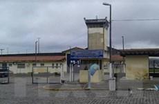 Brazil: Bạo động bùng phát tại nhà tù, hàng chục người chết