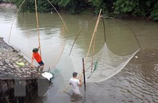 """""""Hồi sinh"""" sông Kim Ngưu: Trả dòng sông trở về tự nhiên"""