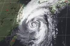 Bão Kong-rey hoành hành phía Nam Nhật Bản, 10 người bị thương