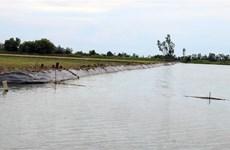 Chìm sà lan chở cát trên sông Hậu, hai mẹ con tử vong