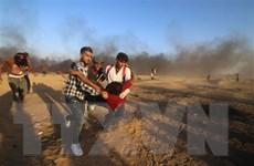 Phiến quân Palestine sẽ ngừng bắn sau hàng loạt vụ đọ súng với Israel
