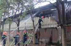 Tiền Giang: Dập tắt kịp thời đám cháy tại cơ sở đóng gói trái cây
