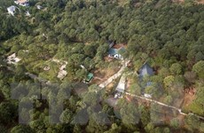 Sở Xây dựng Hà Nội chỉ rõ nguyên nhân vi phạm đất rừng Sóc Sơn