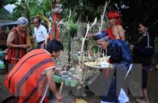 Phục dựng Lễ hội truyền thống Aza Koonh của đồng bào Pa Cô
