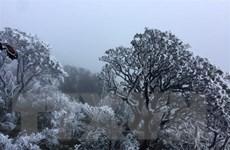 Bắc Bộ rét đậm, vùng núi cao có khả năng xảy ra mưa tuyết, băng giá