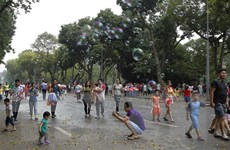 Năm 2019 Hà Nội hướng tới trồng cây xanh đẹp như cây cảnh