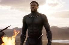 Tranh cãi quanh việc Black Panther được đề cử Oscar Phim hay nhất