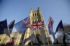 Bộ trưởng Thương mại Anh nỗ lực ký FTA mới với các nước